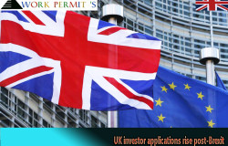 UK investor applications rise post-Brexit12